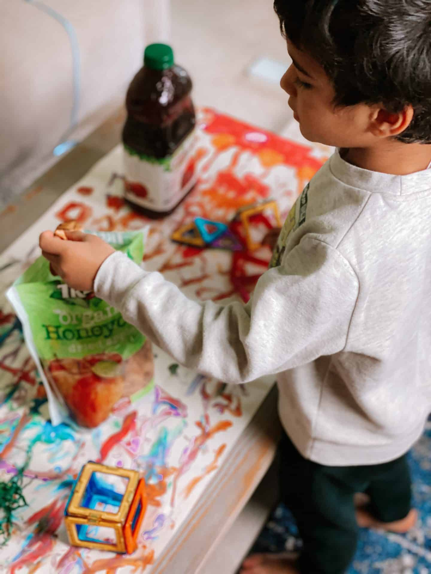 Snack-Time-Ideas-Tree-Top-Fruit-Snacks-Beverage-homeschoool